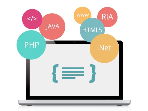 Why Choose A Web Development Company Rather Than A Freelancer