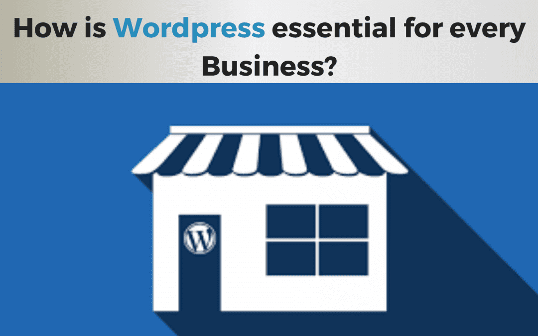 Why is WordPress essential for every business Web Development?